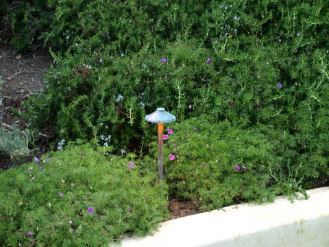 moorpark lighting mushroom light