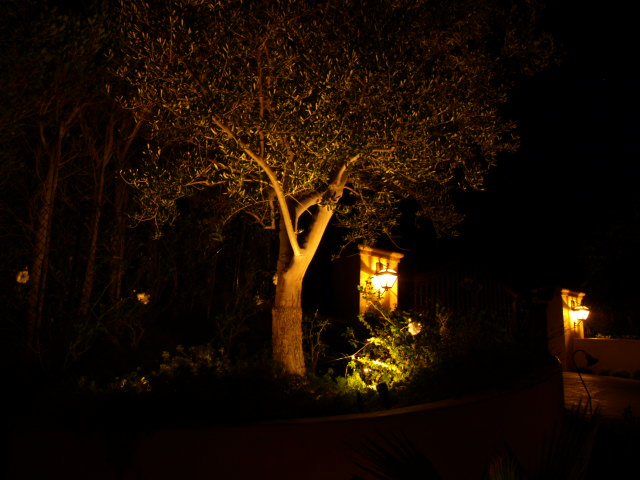 moorpark lighting landscape lights